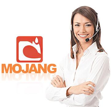 mojang support